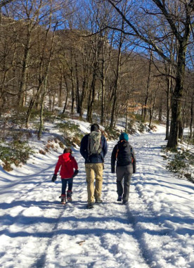 Don't let the cold weather stop your family from getting out there for a hike or walk in the crisp fresh air to see all the beauty life has to offer.