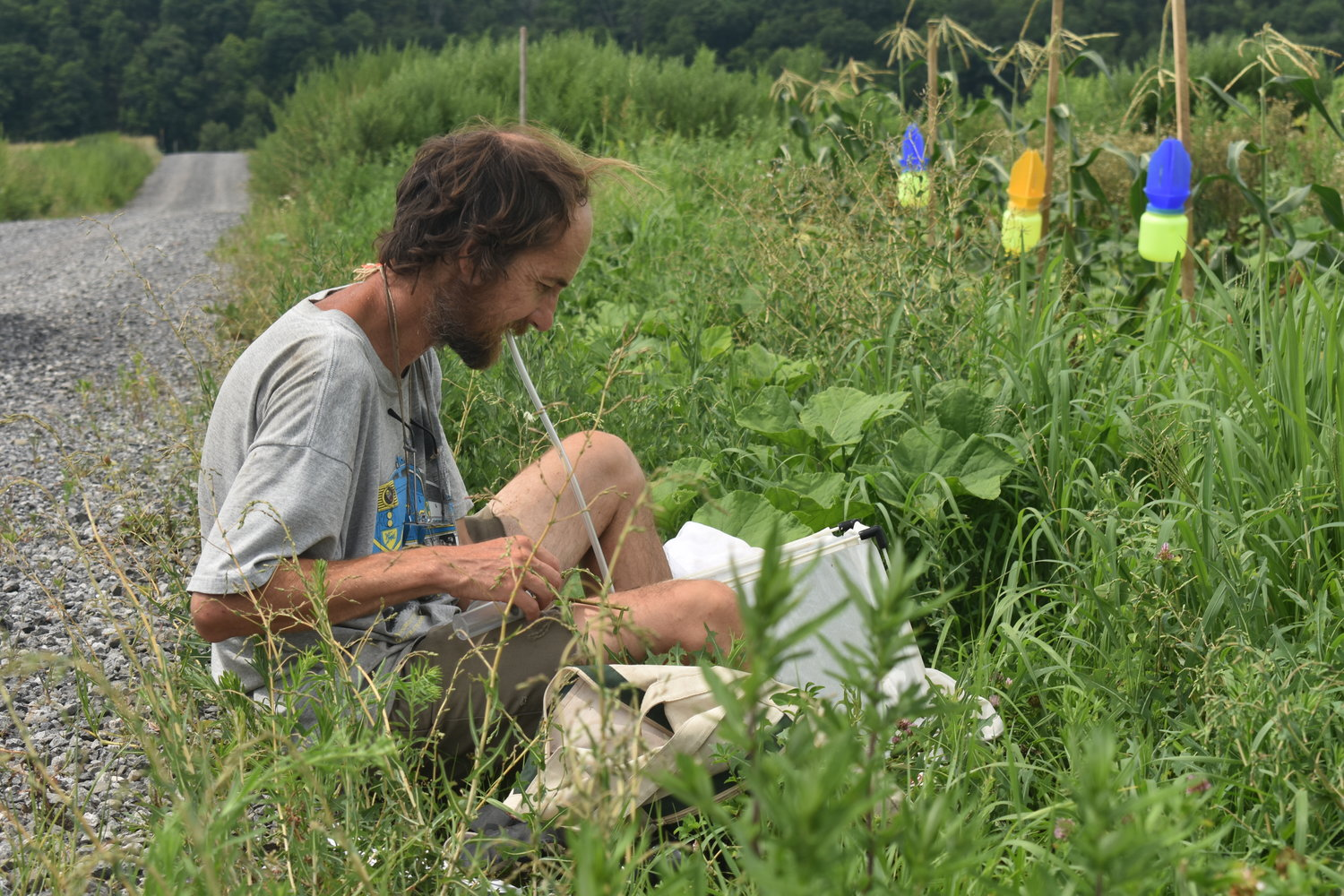 Conrad Vispo of Hawthorne Valley is the lead researcher for the Native Meadow Trial at the Hudson Valley Farm Hub in September 2021.