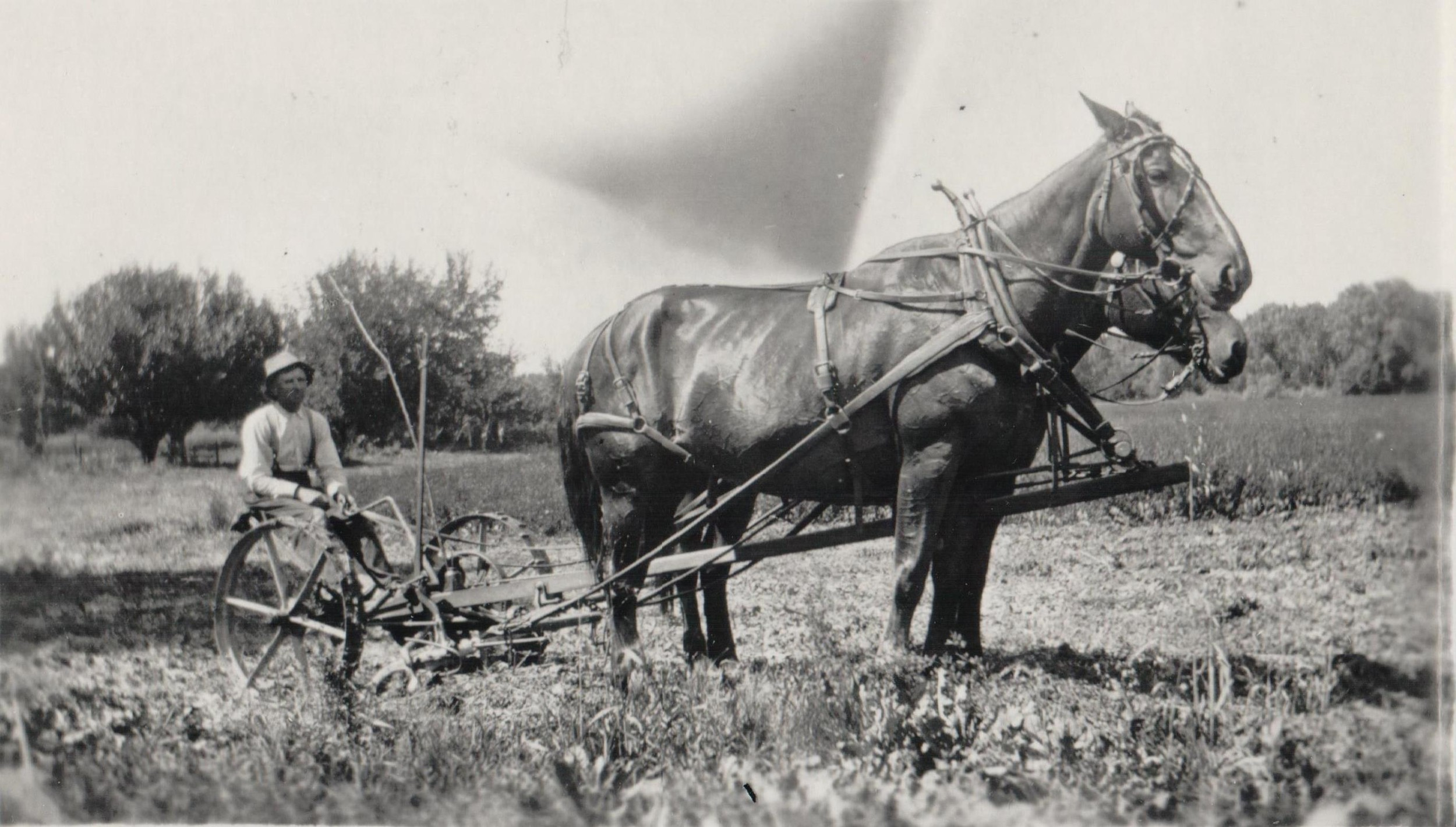 Abe Howarth Jr. on his farm on Plum Creek, south of Wolhurst. Date unknown.