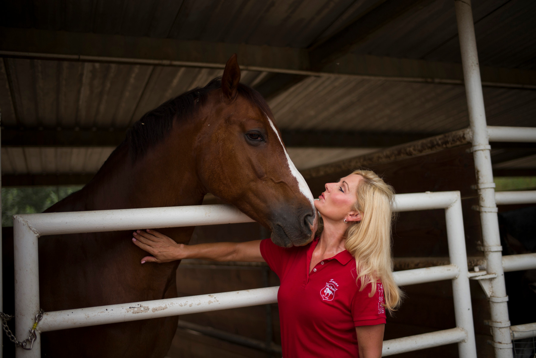 In this July 10, 2014 photo, Susan Peirce, founder of Red Bucket Equine Rescue, bonds with a rescued horse at the Red Bucket Equine Rescue in Chino Hills, Calif. Almost every horse rescue in the country is running out of room or money or both. When the recession started, some people had to dump their horses and discontinue donations to horse charities.