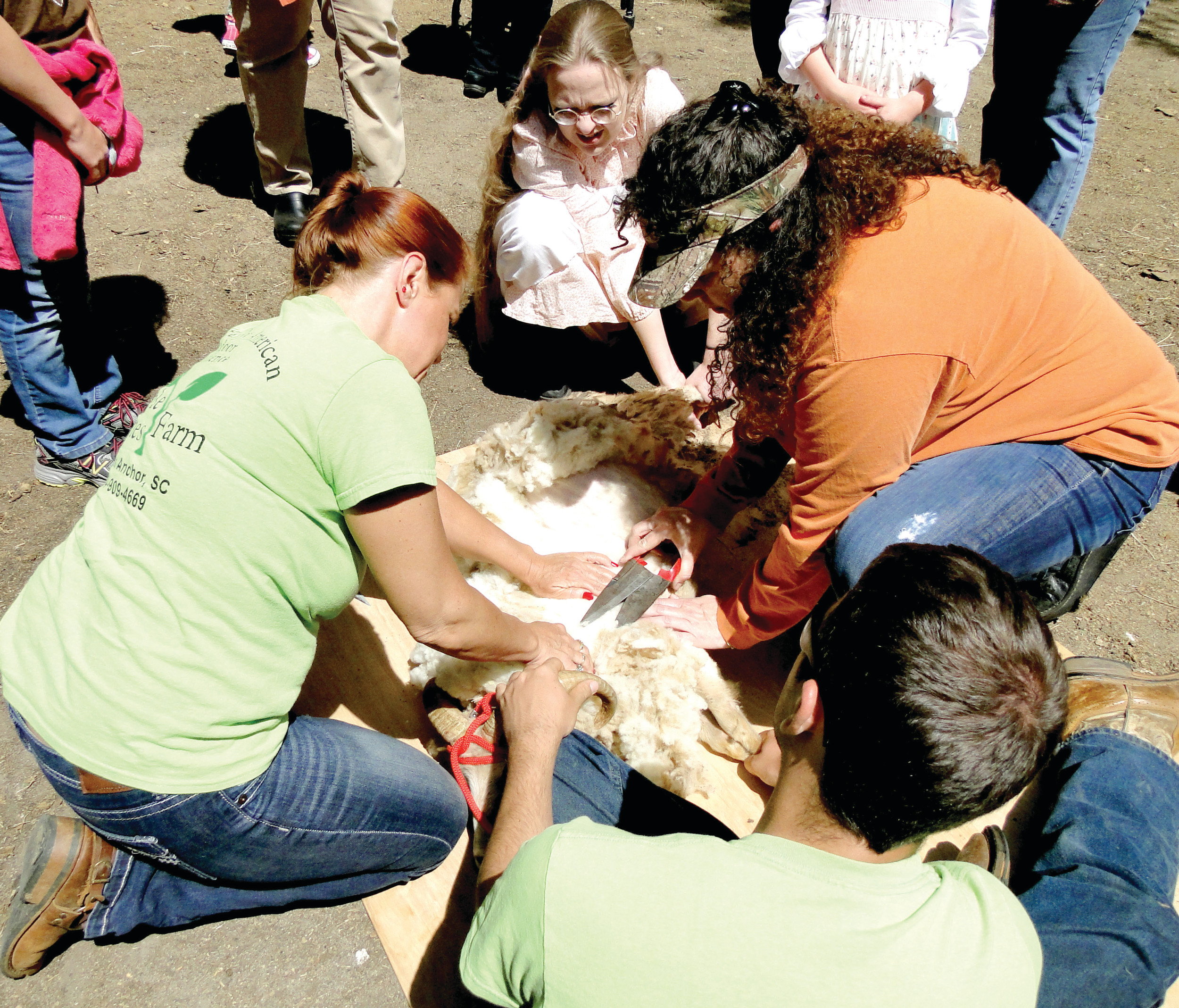 Sandra Kay, left, of Simple Times Farm in Cross Anchor, teaches Jacqui Clarke of Cheraw how to shear a sheep the old-fashioned way. Sheep will get their once-a-year shearing Saturday, and Old McCaskill's Farm at Rembert invites the public to come observe and participate in other activities on the working farm. Border collie demonstrations and fresh farm concessions are also on the agenda for the 10 a.m. to 6 p.m. event.