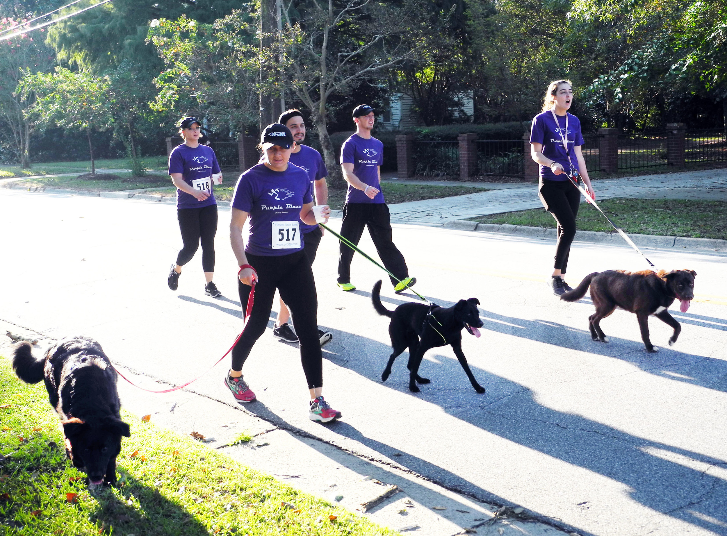 Team Purple Blaze, all employees of Anytime Fitness, walked the Forrest Ray 5K race Saturday, part of the Sumter Series road race schedule. The race through the Sumter historic district benefits the Sumter County Library.