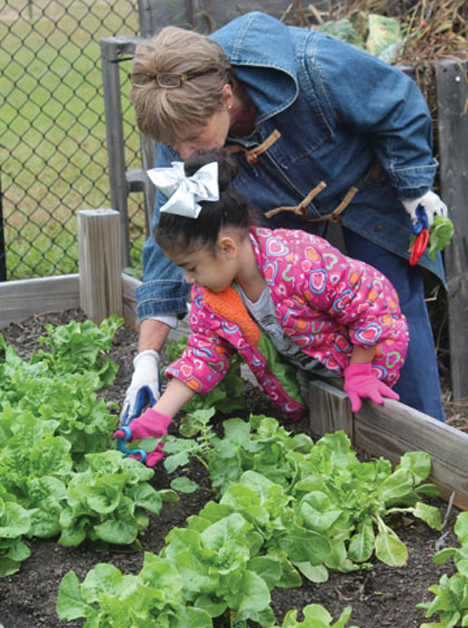 Volunteer Mary Arlen helps a kindergarten student collect lettuce leaves from the raised garden behind the school.