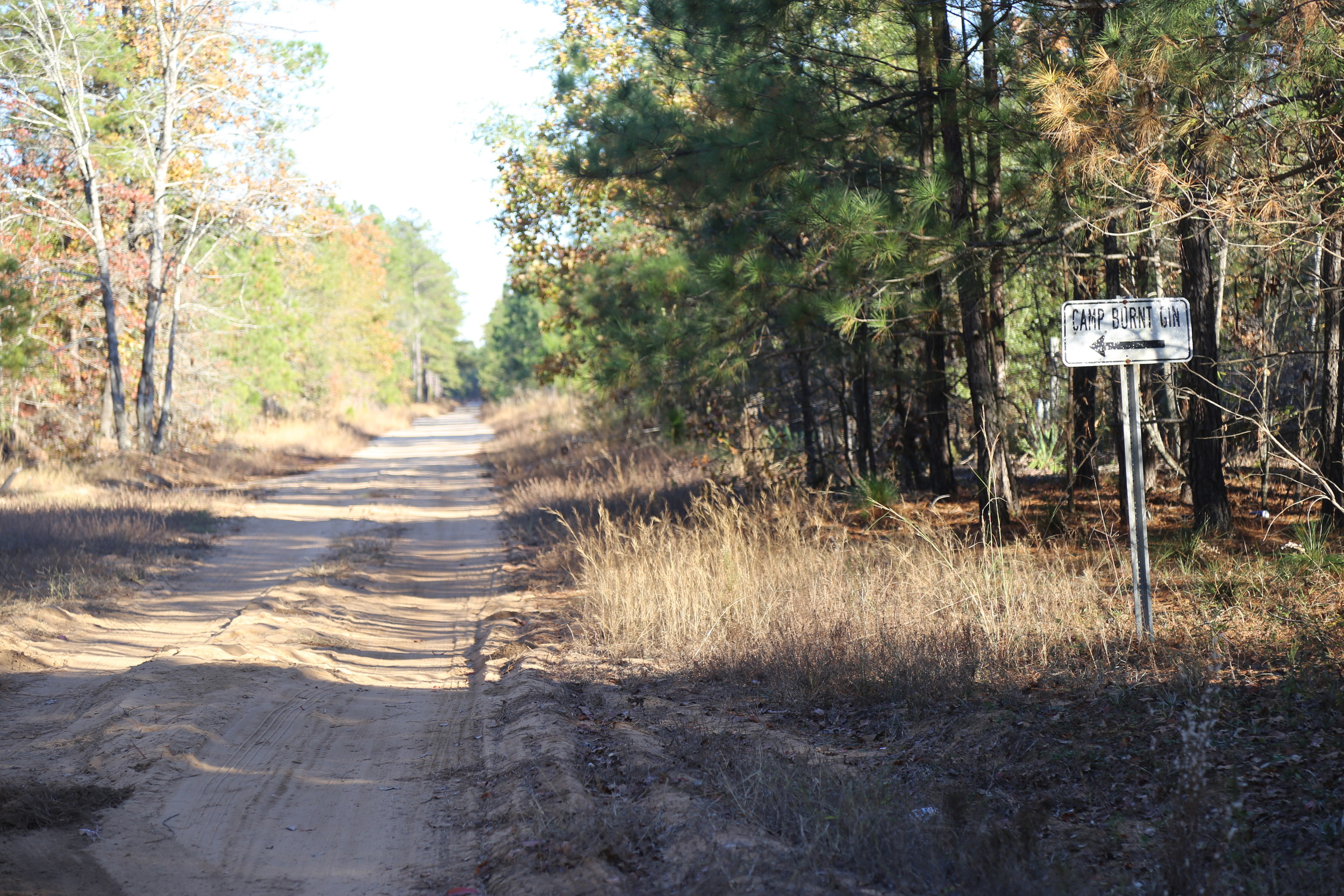A shallow grave was discovered off this road Thursday by a man canvassing the area for places to put hunting cameras.