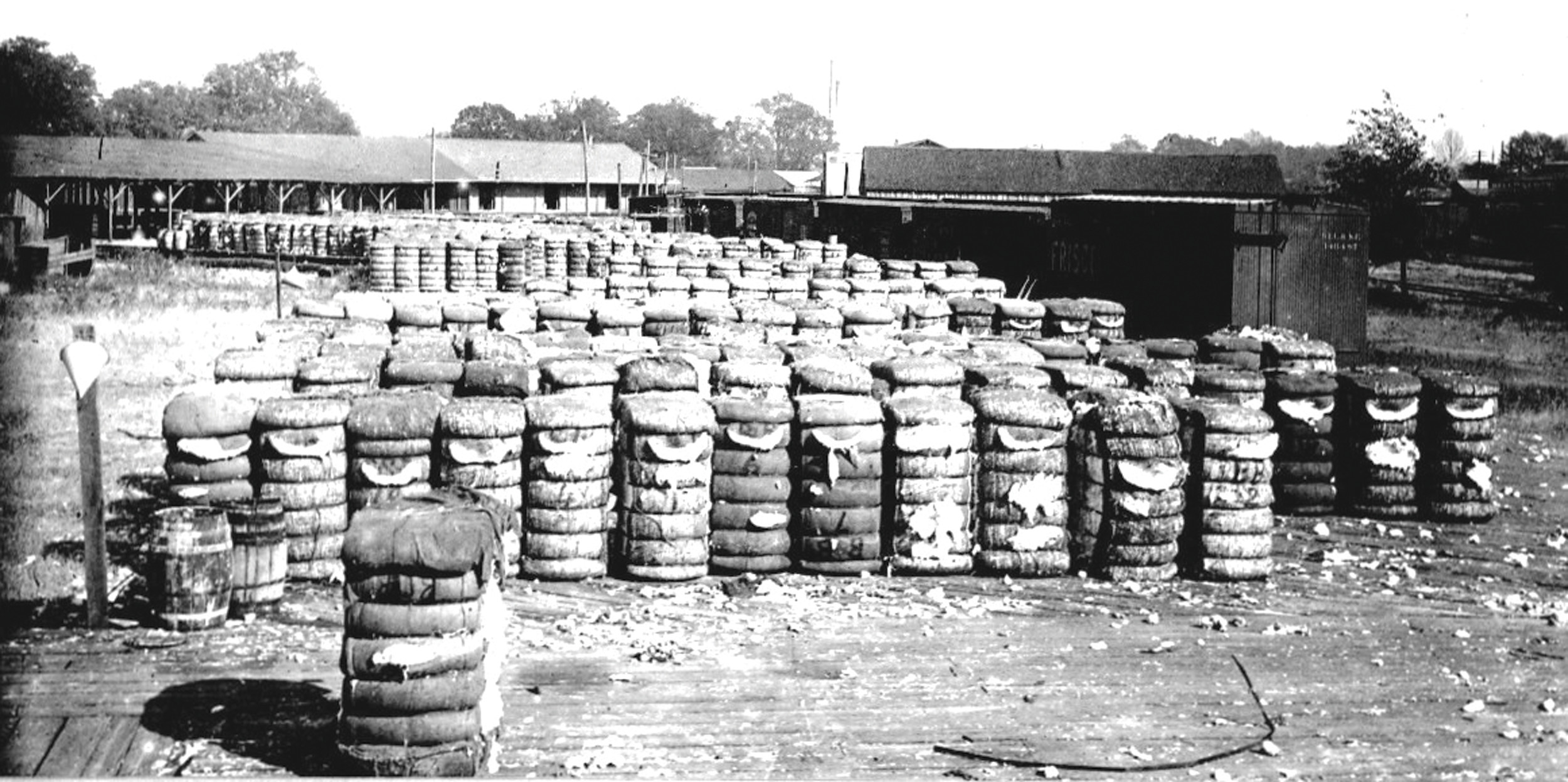 Bales of cotton are seen.