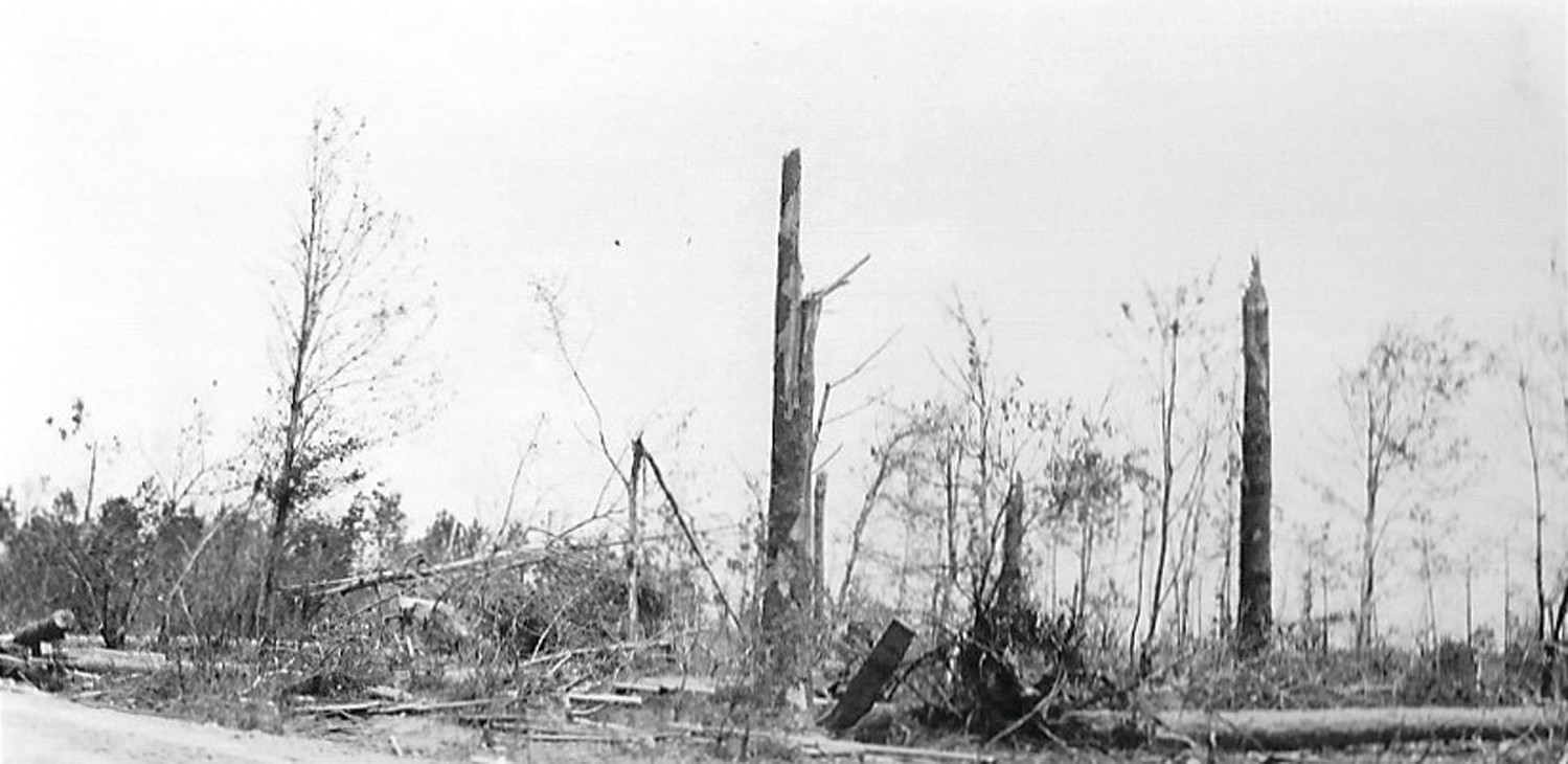 Snapped trees are seen in Horatio after the storm passed through the area in 1924.