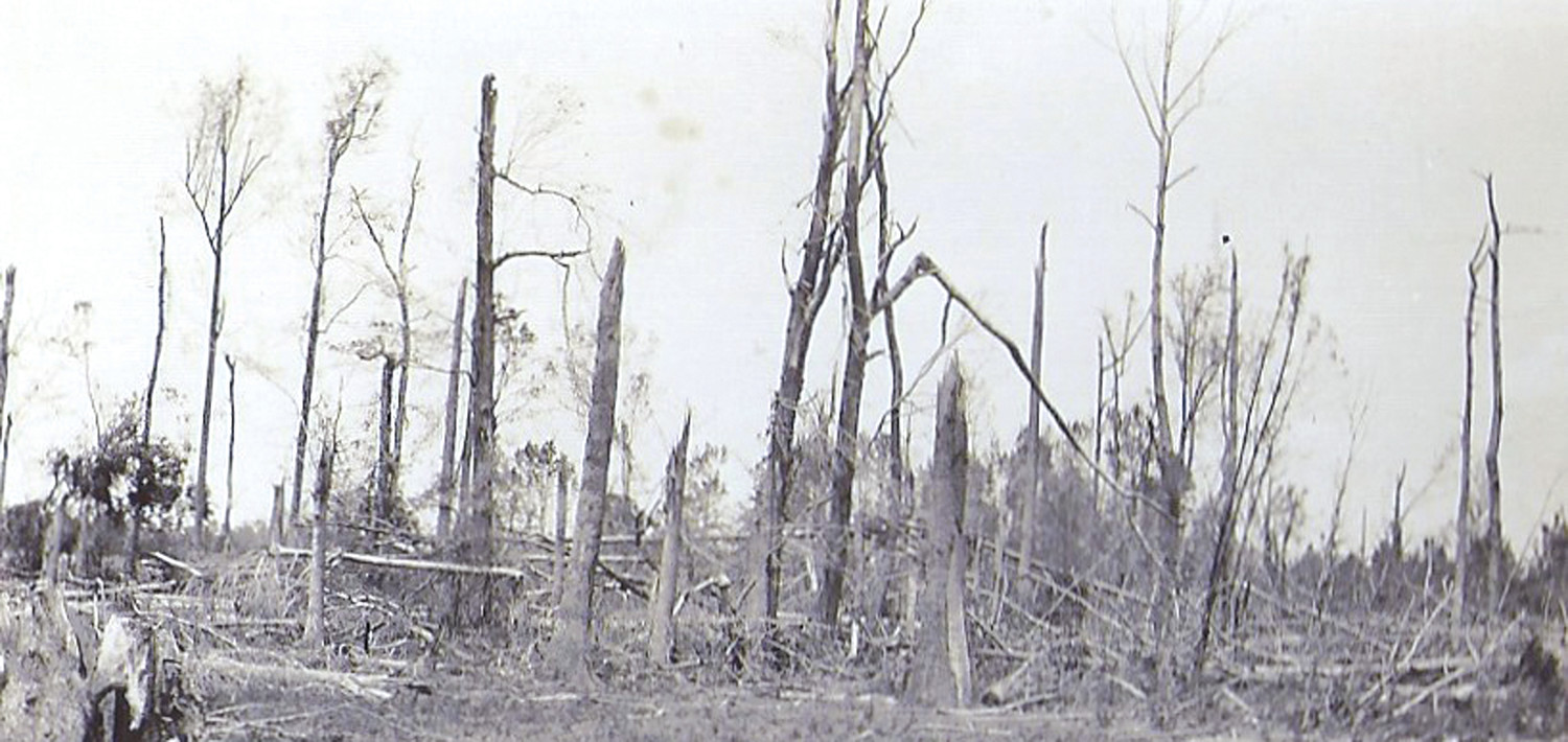 The tornado led to a path of damage through Wateree Swamp.