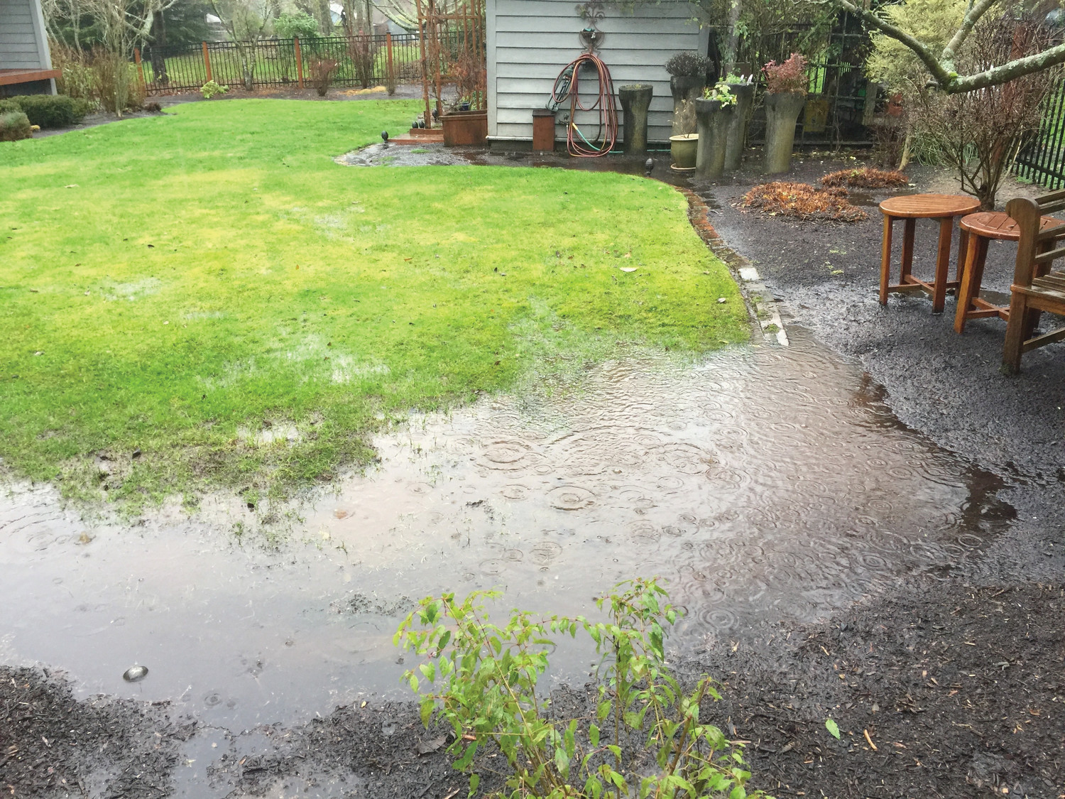 Water pools in a low spot on a homeowner's lawn near Langley, Washington, in December. The financial costs of poor drainage on properties can be substantial. Prevention is the cure.