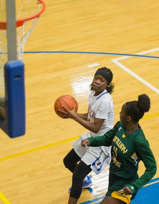 Carnasia Wells (4) and the Sumter Lady Gamecocks topped White Knoll 56-31 in the first round of the 5A state playoffs on Tuesday at the SHS gymnasium.