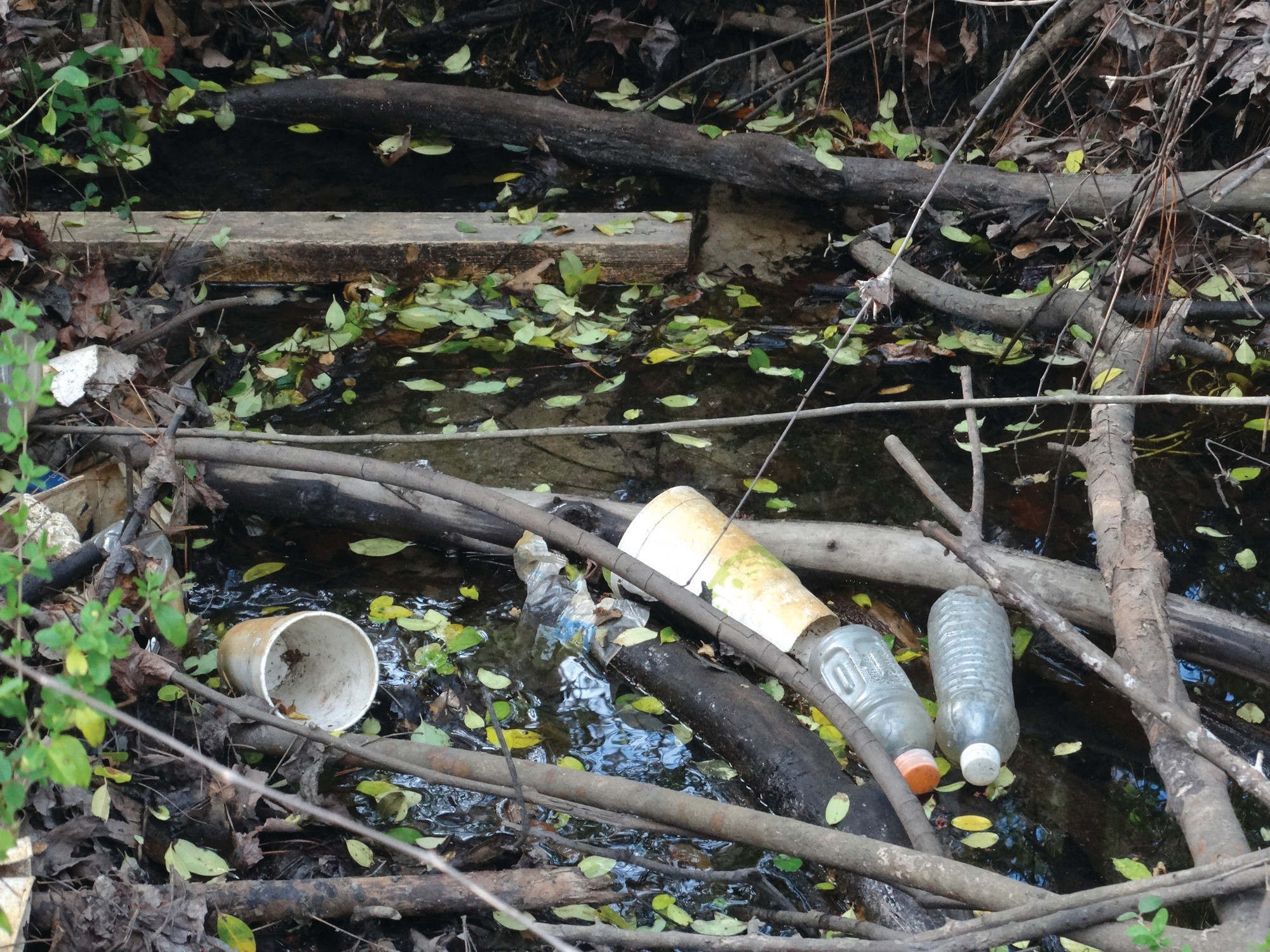 Waterways around Sumter need to be cleaned of debris.