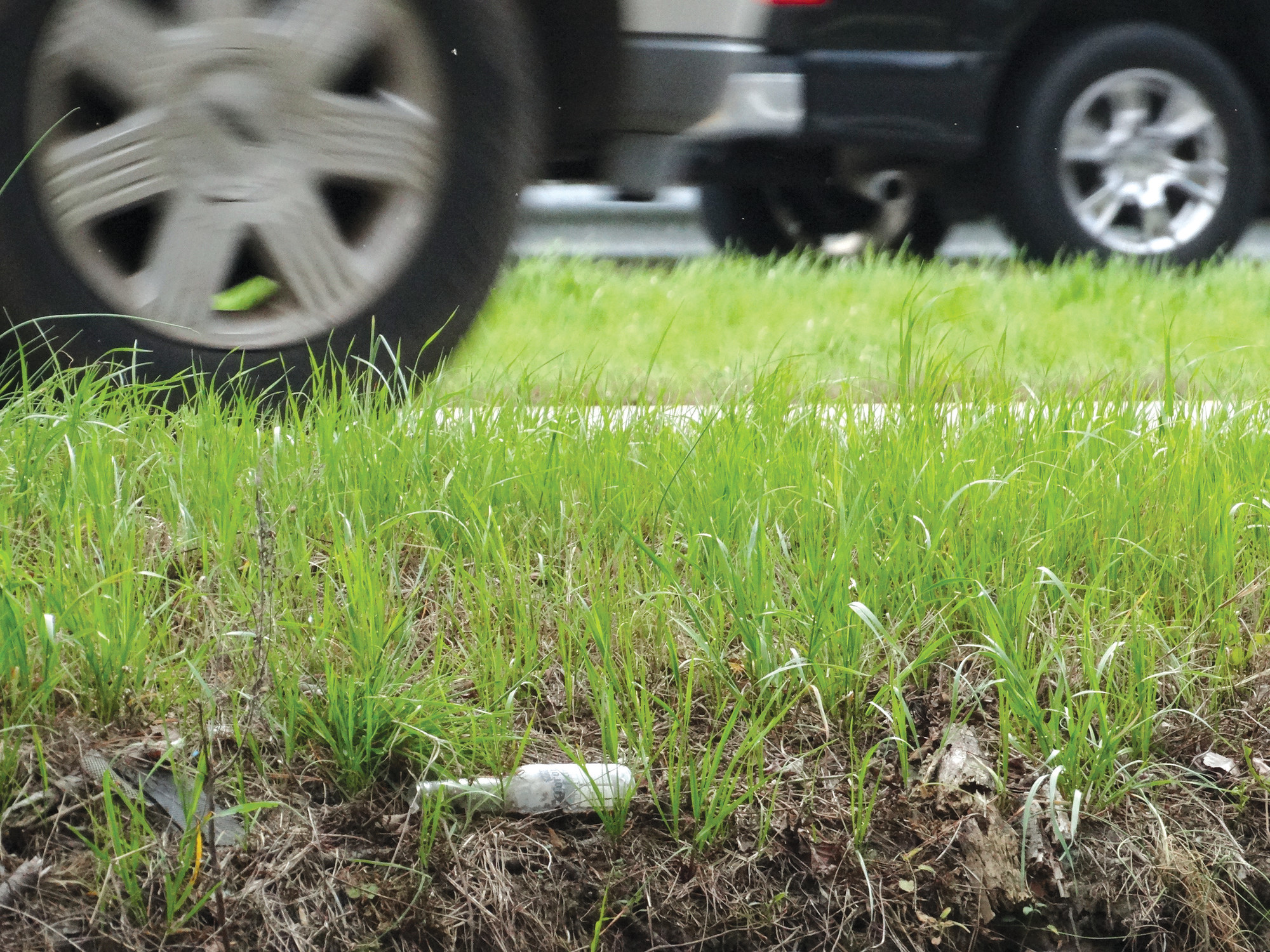 Roadways across Sumter accumulate trash thrown from vehicles.