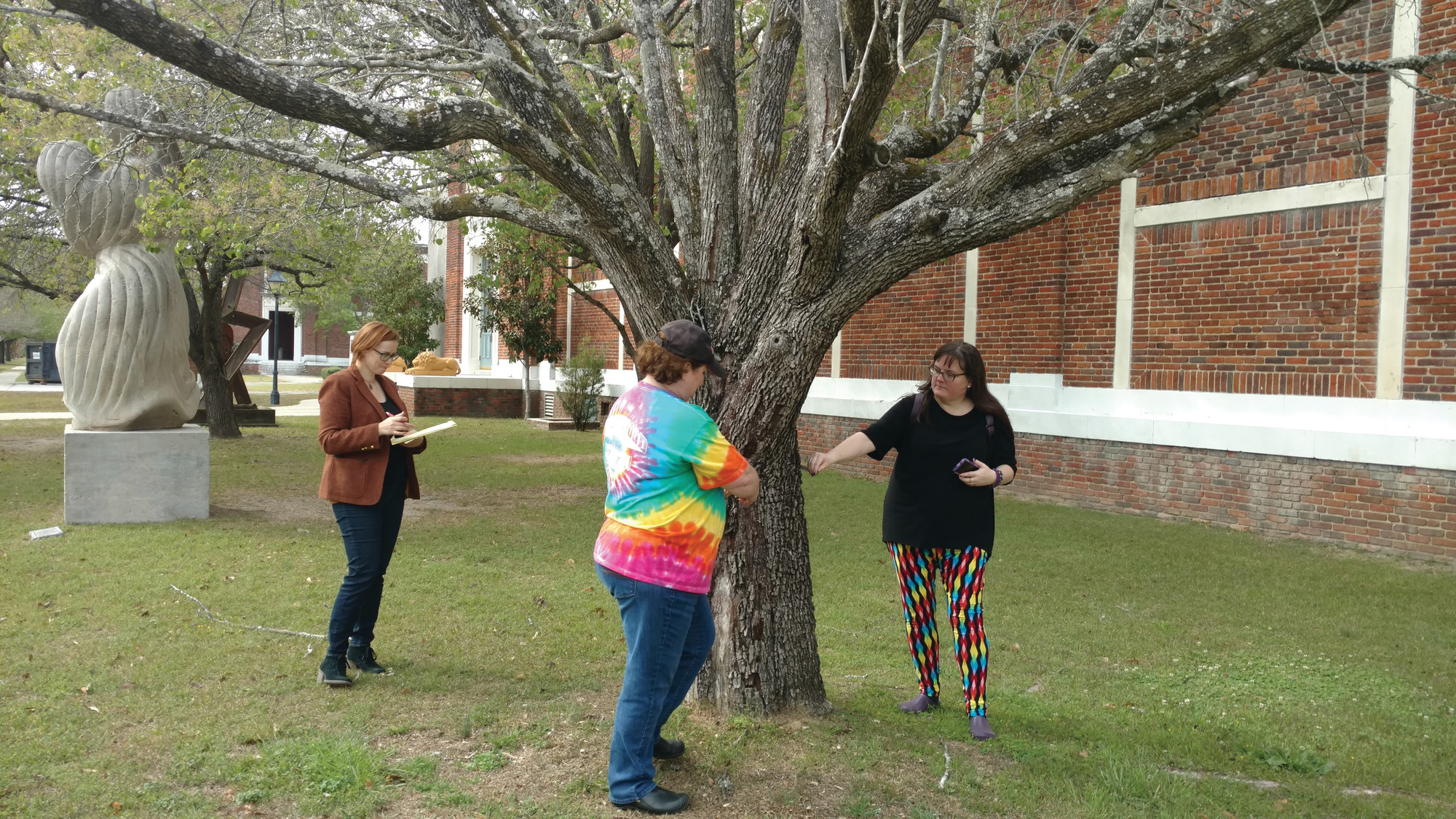 PHOTOS PROVIDEDBohumila Augustinova, Pamela Leonard and Jamie Weese, yarn bombers from Columbia, measure a tree for the Sumter Yarn Explosion that begins this month.