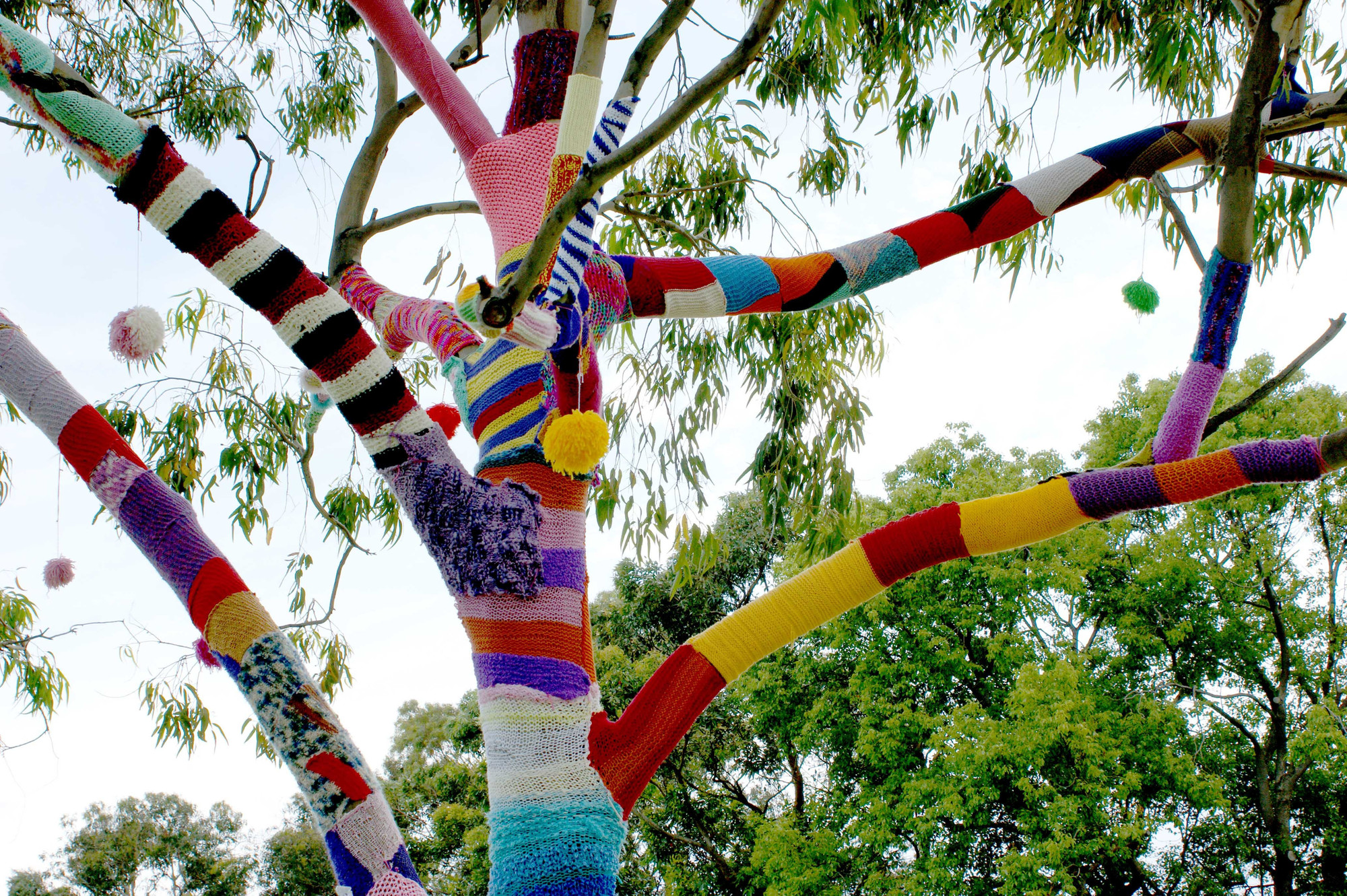 Trees, fixtures and even the columns of Patriot Hall will be covered in yarn through the Sumter Yarn Explosion.