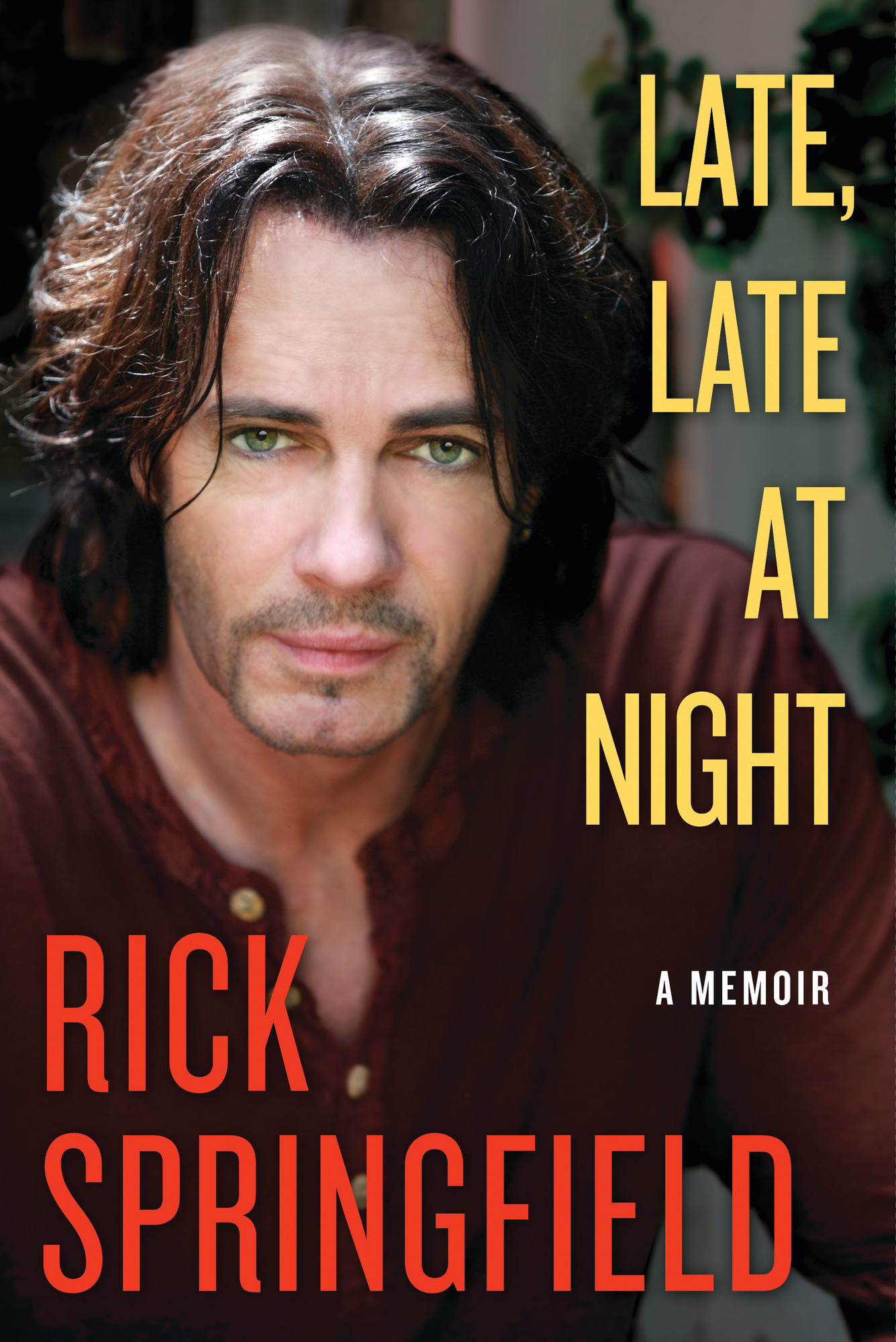 "Cover of Springfield's best-selling 2011 memoir ""Late, Late at Night"""