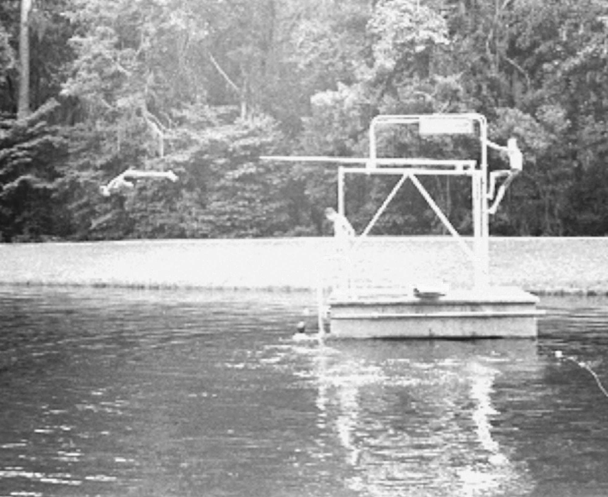 A diving platform once added to the swimming options at Poinsett State Park.