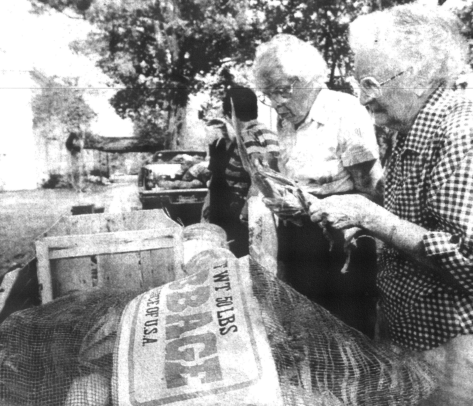 1993 - Marion Young, right, and Helen Carroll examine corn for sale at the Seeds of Hope farmers market at First Presbyterian Church.