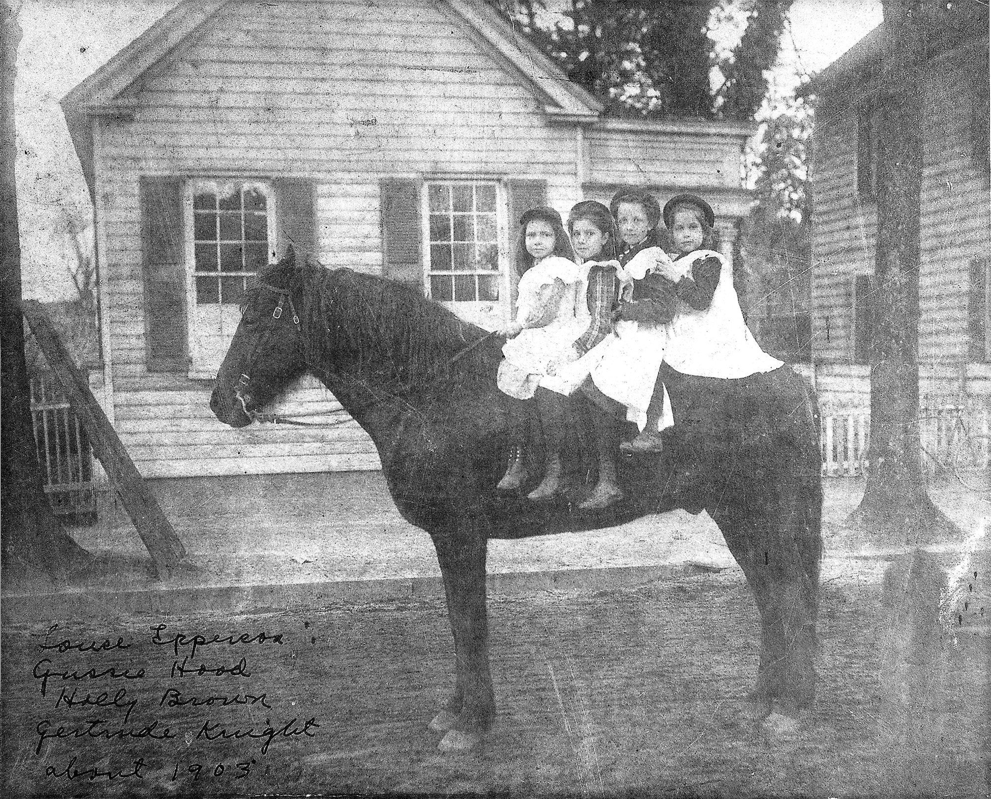 Louise Epperson, Gussie Hood, Holly Brown and Gertrude Knight ride a horse about 1903 in Sumter. The Haynsworth-Fraser Law Office is seen in the background at the southeast corner of Main Street at Law Range.