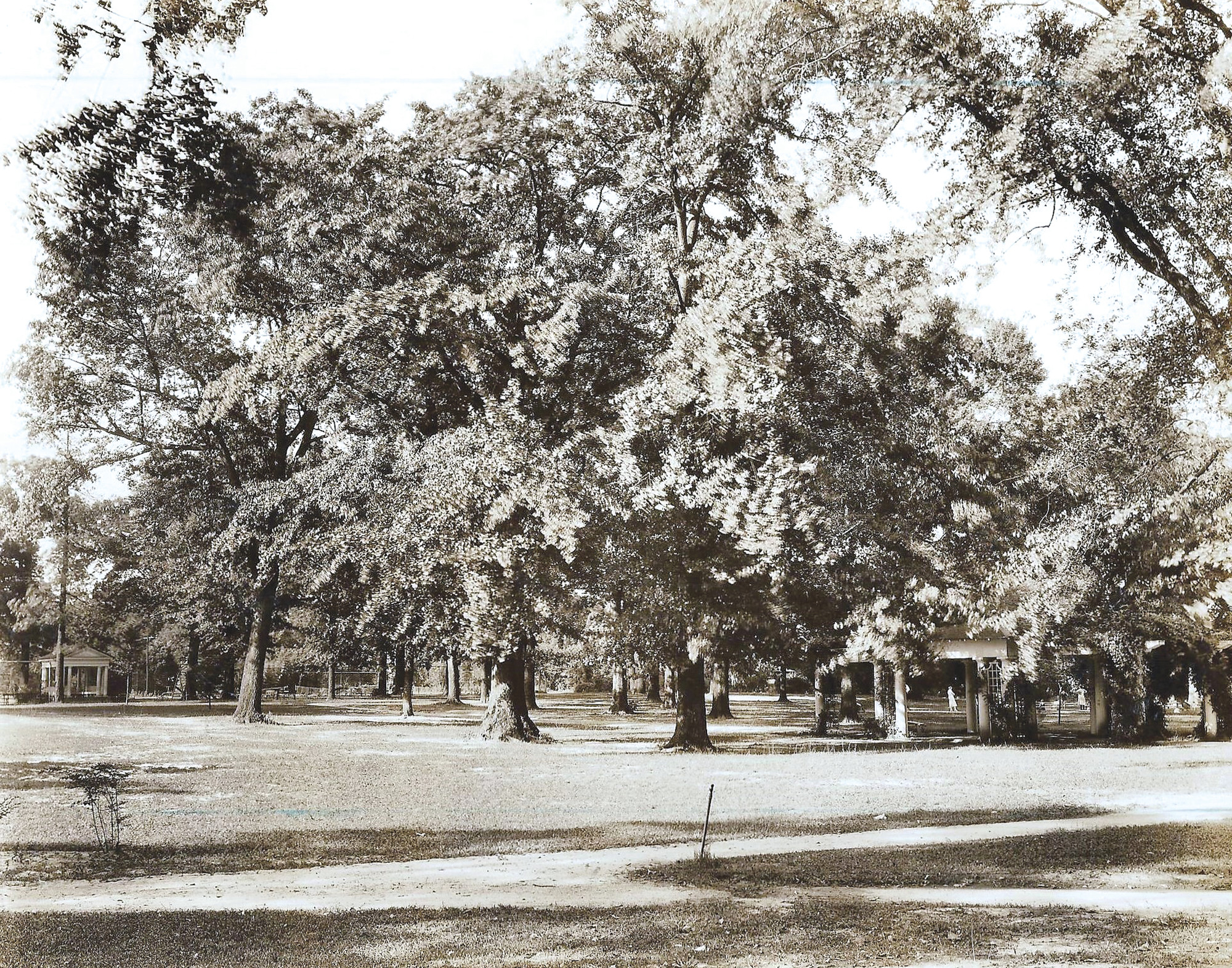 Memorial Park was designed by Julia Lester Dillon and remains one of the most beautiful parks in Sumter.