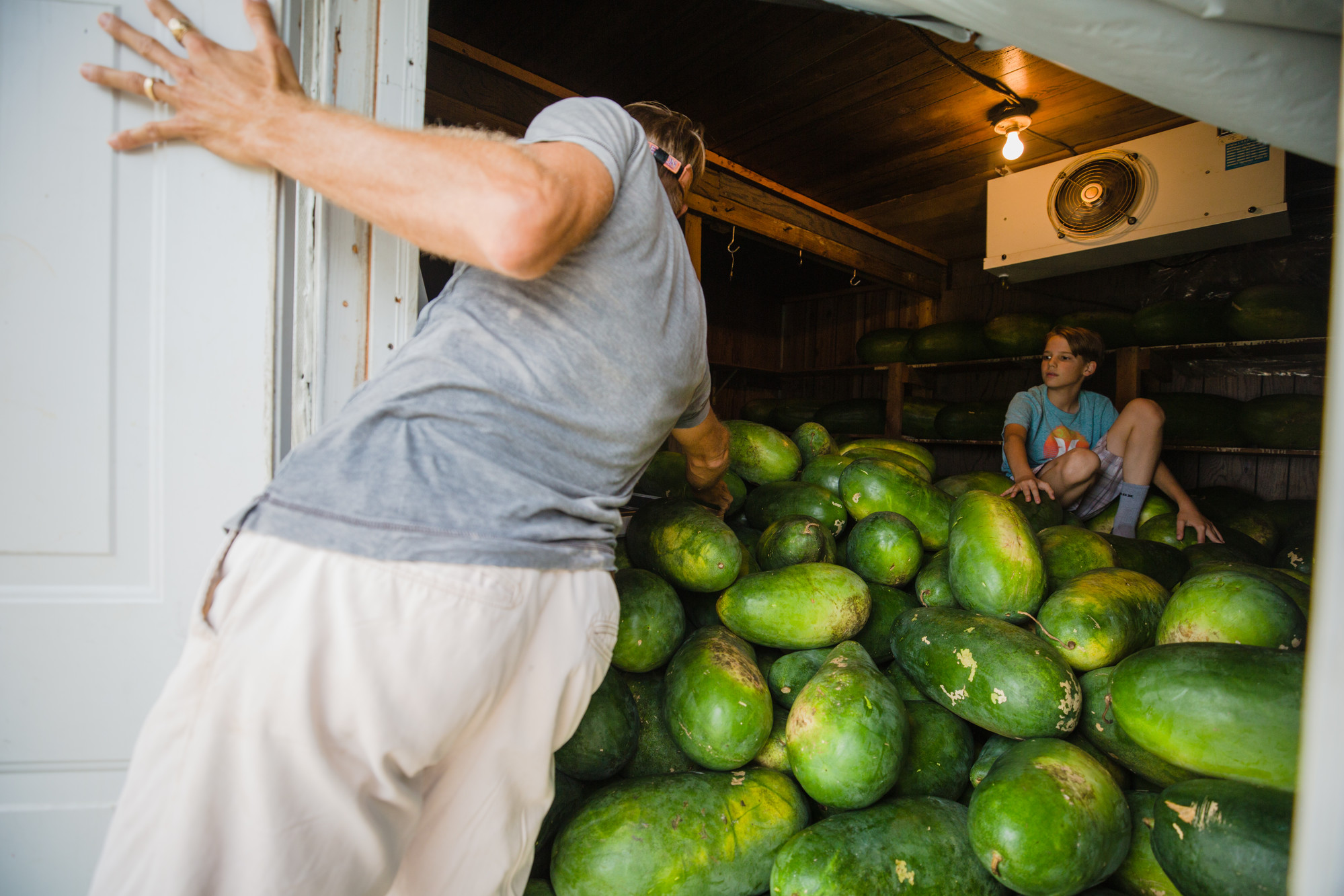 Nat Bradford looks into the about 900 watermelons he has stored away from Hurricane Florence on Friday, Sept. 14.