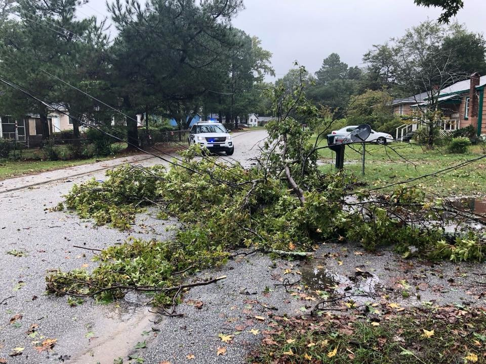 Limbs brought power lines down on Porter Street Thursday, Oct. 11 during Tropical Storm Michael.