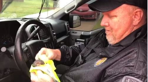 Sumter Police Department Detective Rick Morris rescued a baby squirrel after it fell from a tree Thursday, Oct. 11 during Tropical Storm Michael.