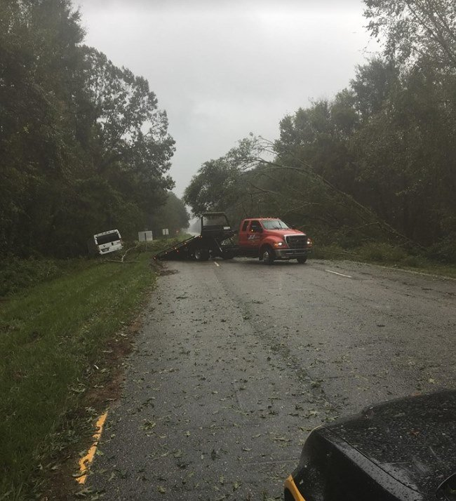 A tree fell on Hwy. 378 Thursday, Oct. 11 during Tropical Storm Michael.