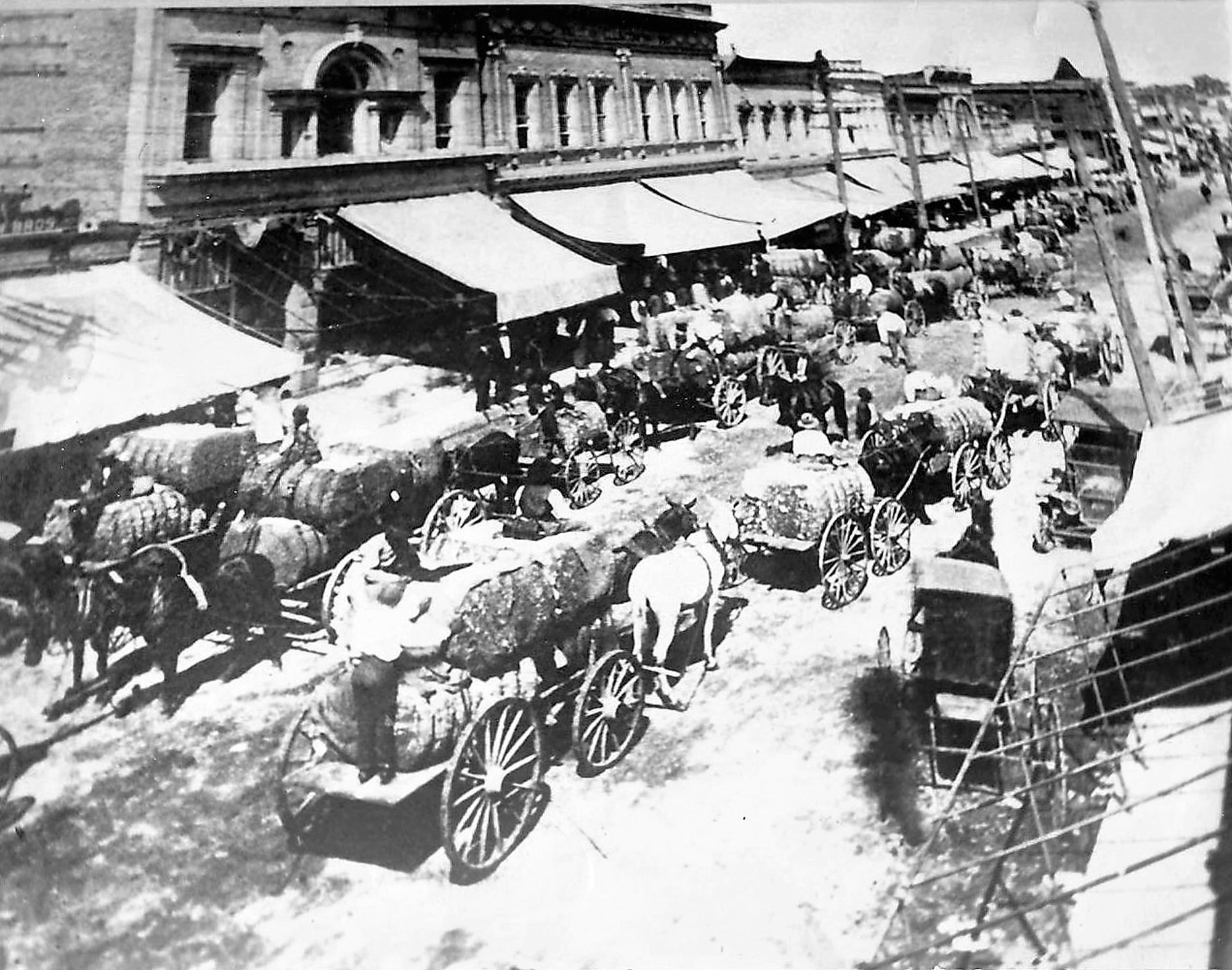 PHOTO SUBMITTED BY MARION CARTER  Cotton day is seen in 1910. Scarborough was a member of the South Carolina Cotton Growers' Cooperative Association.
