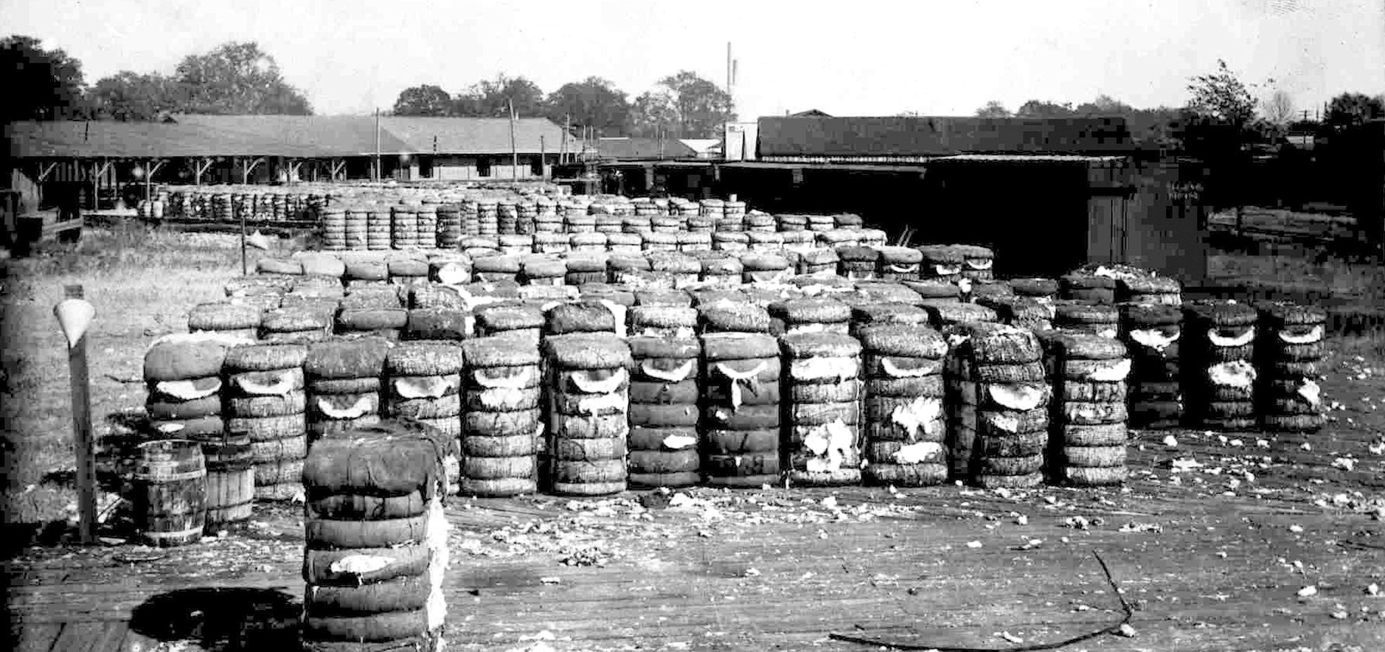 Bales of cotton wait for shipment from Sumter.