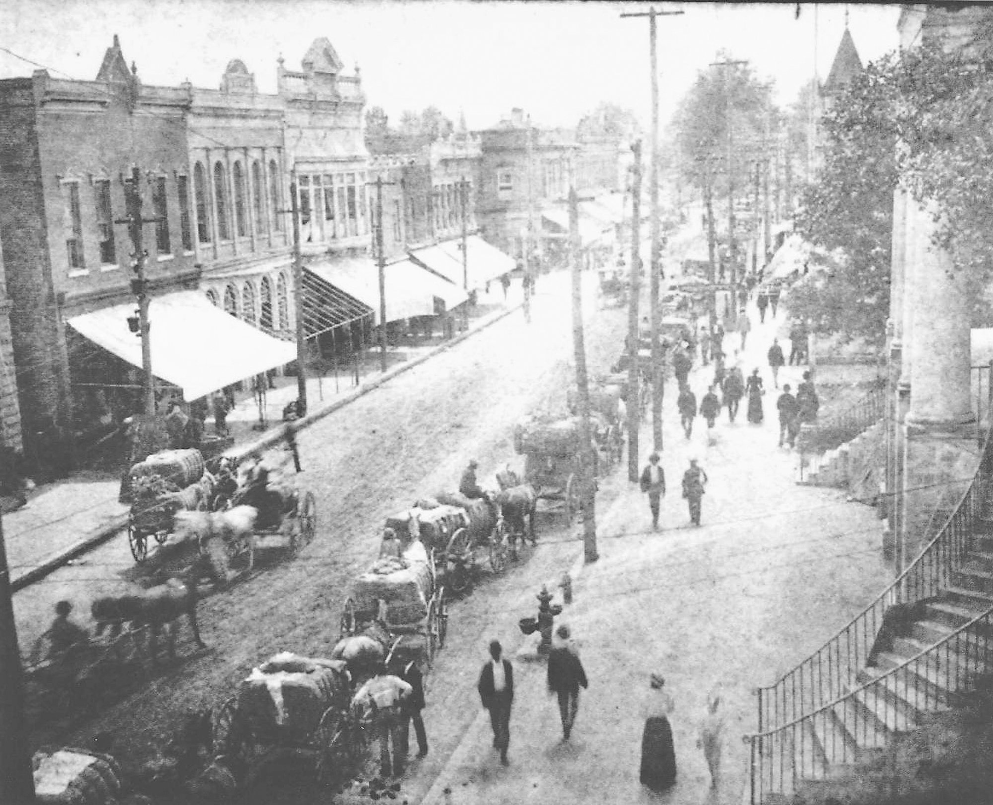 Main Street in Sumter is seen looking north about 1910-1912, with bales of cotton moving in wagons along the street.