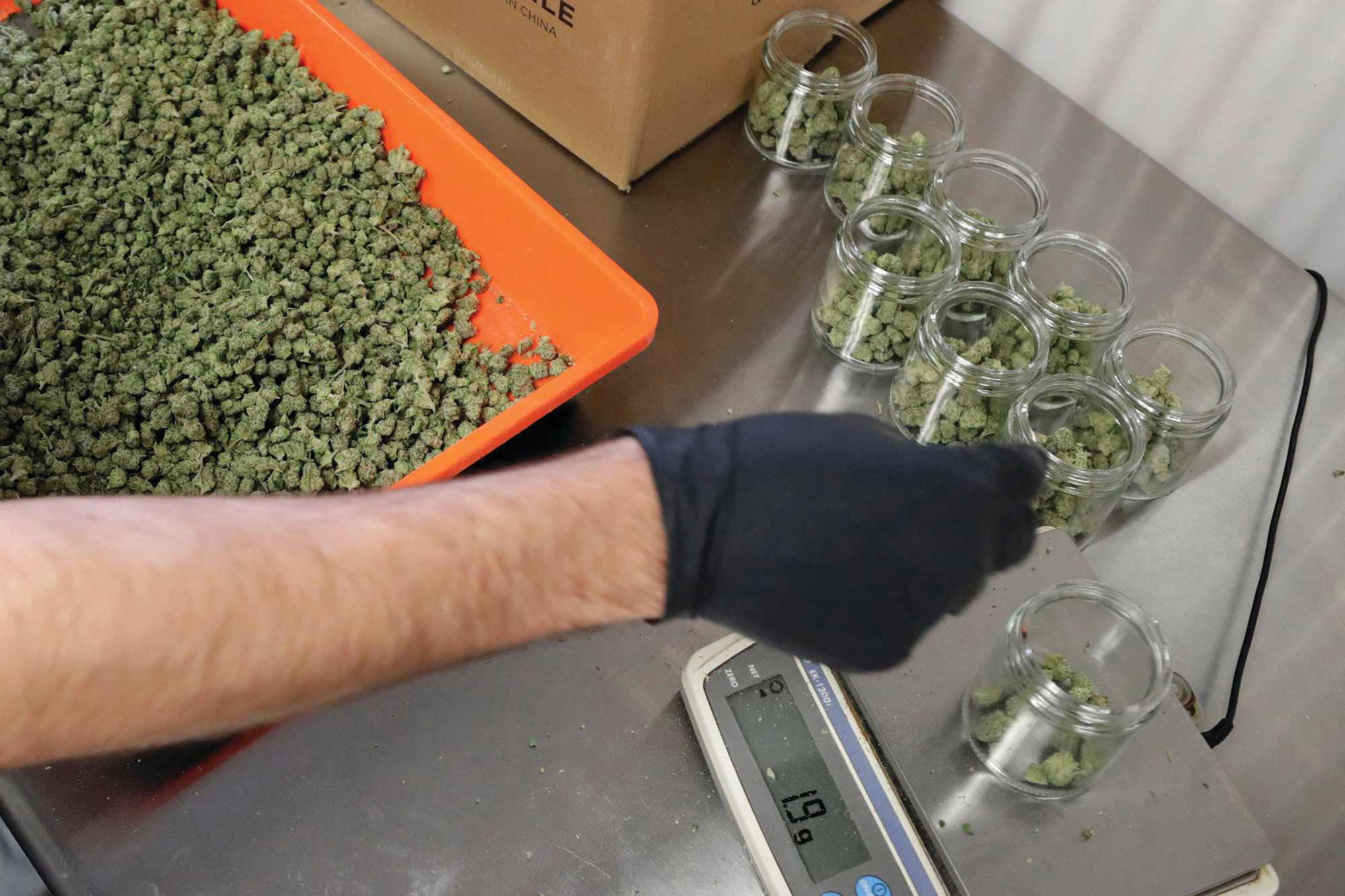 An employee at a medical marijuana dispensary in Egg Harbor Township, New Jersey, sorts buds into prescription bottles in March. At the end of 2018, about 1.4 million Americans are actively using marijuana to treat anxiety, sleep apnea, cancer and other conditions, according to an Associated Press analysis of states that track medical marijuana patients.