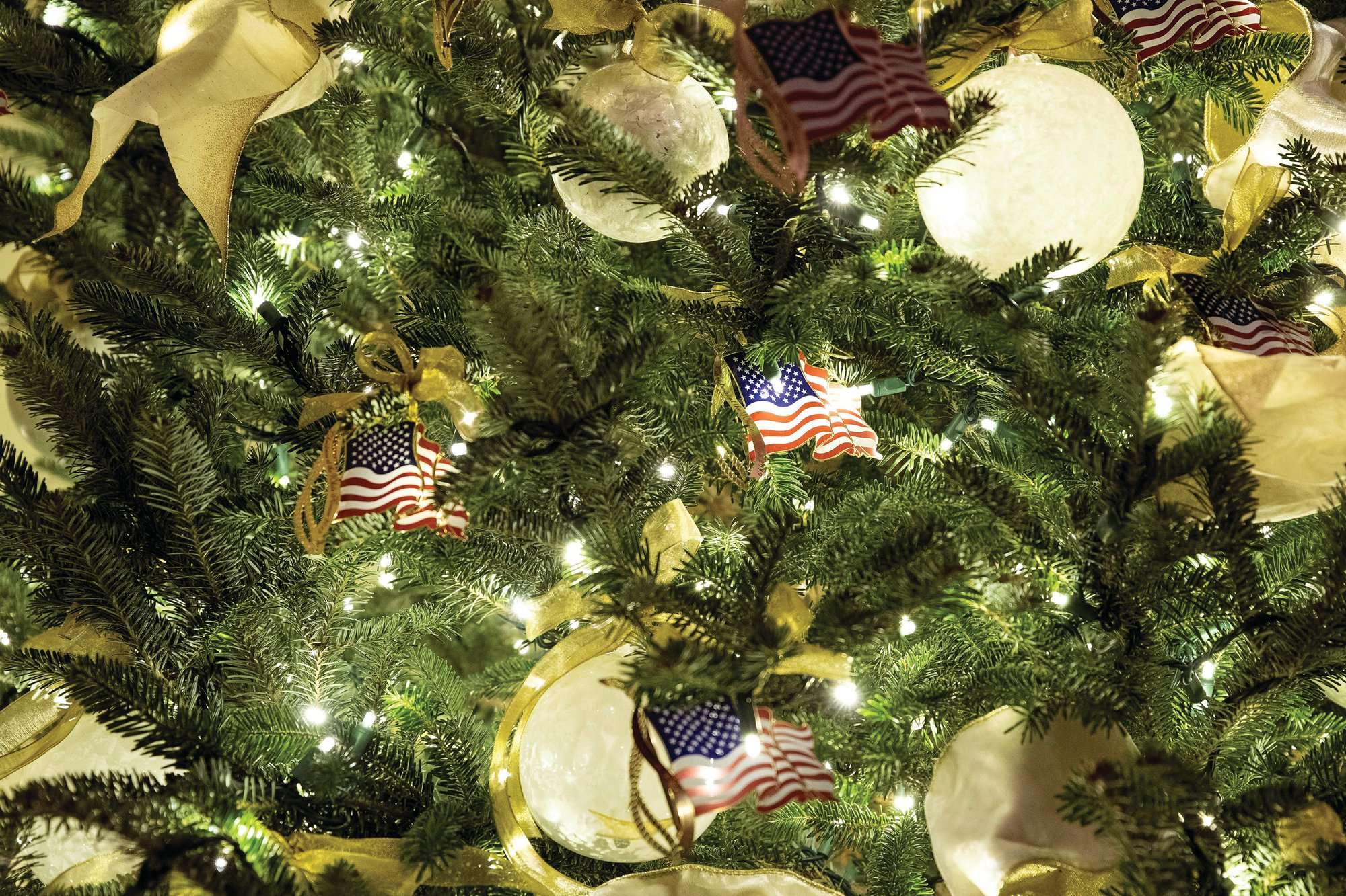 The First Family's annual ornament, the American flag, decorates a tree in the White House.