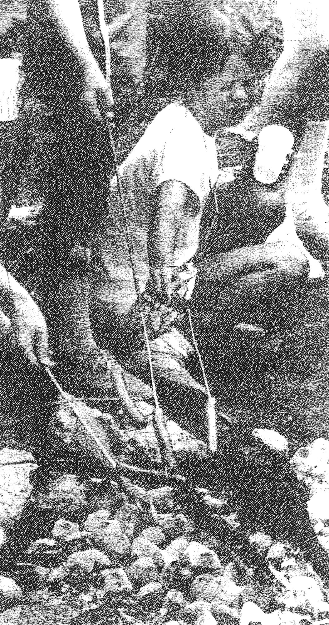 "1977 - ""This hot dog better be worth it"" says camper Connie Kendrick as the girls prepare their lunch. Sumter neighborhood Girl Scouts had two weeks at Camp Hideaway off S.C. 441 with arts, crafts, singing and other activities. All ages of Girl Scouts participated in the camp activities, headed by B. M. Pate."
