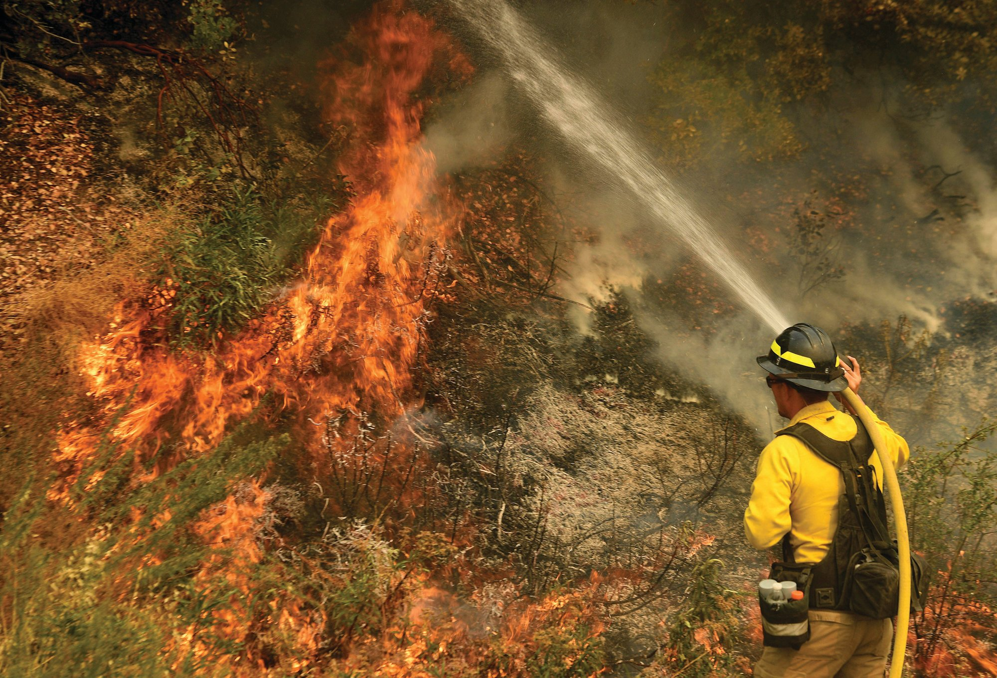 Will Lester / The Orange County Register/SCNG via AP   A firefighter puts out a hot spot along Highway 38 northwest of Forrest Falls, California, as the El Dorado Fire continues to burn Thursday afternoon. The fire started by a device at a gender reveal party last Saturday.