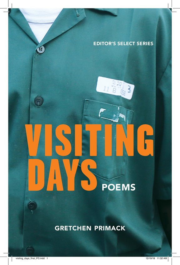 Book cover, Visiting Days
