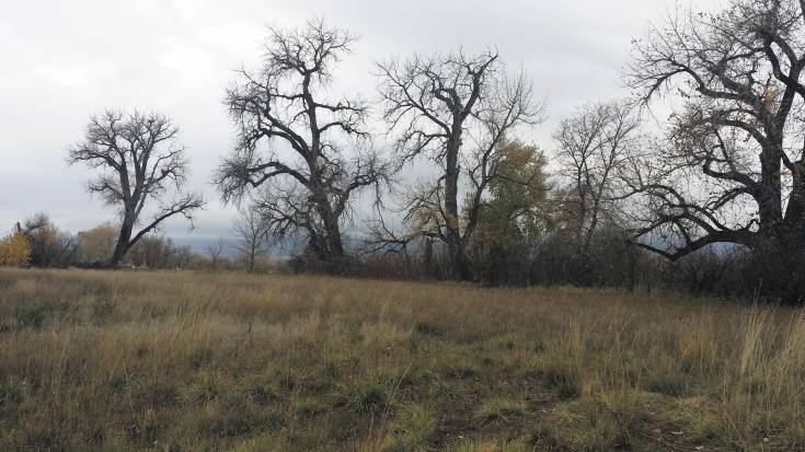 This 111-acre site, which the Ensor family would like to sell, gave taxing entities like Littleton Public Schools leverage in their negotiations with the city's urban-renewal authority, ensuring they will receive a share of any economic growth that occurs as a result of the authority's actions.