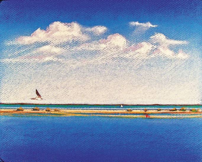 """Pelican Siesta"" by Kate Juricek, an 8""x24"" acrylic on board will be featured in Littleton's Town Hall exhibit, ""Art of Water"" through Jan. 5. Juricek focused on paintings of the barrier islands for this exhibit."