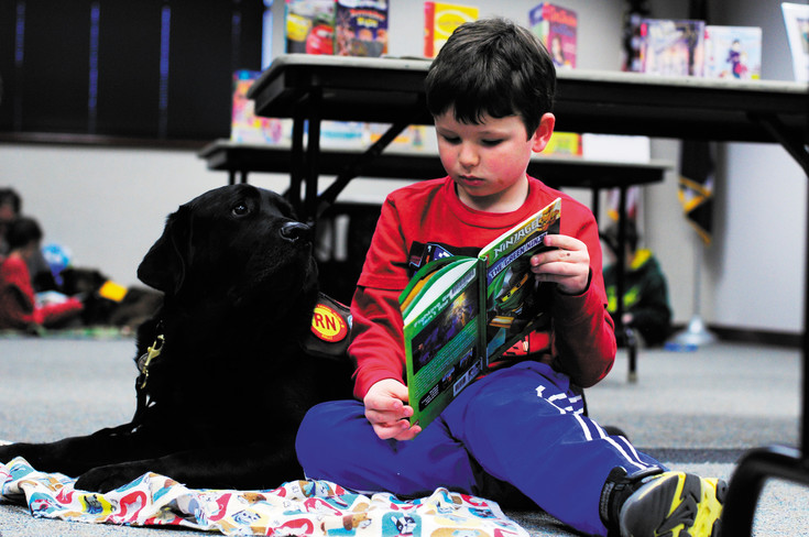 ​Liam Peterson, 6, reads his book to Chester, an English Labrador at PAWS for reading at the Golden Library on Saturday, Jan. 3.