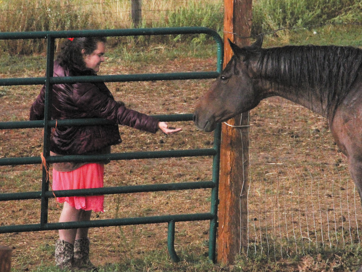 Bella Kirshner, 15, feeds a cookie to a rescue horse.