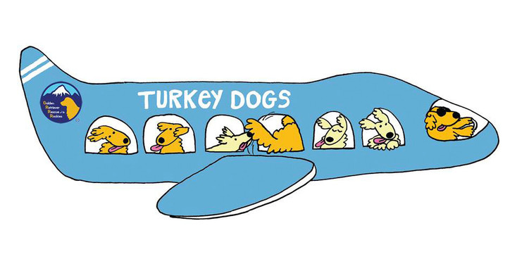 Flying high above the ocean, 10 golden retrievers are preparing to land in the United States as part of a rescue by Colorado's Golden Retriever Rescue of the Rockies. This is the first trip that the organization has sponsored. Courtesy graphic