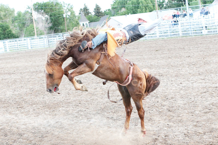 Cowboy Larry Carter competes in the bareback competition. The Cowboy Up is celebrating its twentieth year of rodeo in Kiowa.