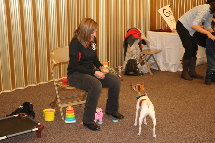 Staff with Go Team Therapy Dogs show-off the skills of their trained therapy dogs at the first annual Just Serve Volunteer Fair on Feb. 25.