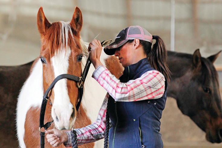 Jacqui Avis bridles a horse at King of Hearts Ranch in Franktown, home of the nonprofit horse rescue Drifter's Hearts of Hope. Avis co-founded the organization in 2014 to save horses from being shipped to Mexdico for slaughter.