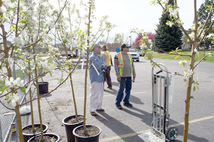 A resident and a city worker discuss tree planting strategies on April 8 during Lone Tree's Tree Sale pick up.
