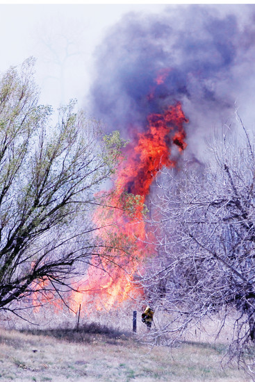 A lone firefighter with South Metro Fire Rescue monitors the edge of a brush fire along the Cherry Creek Trail on April 13. Authorities wouldn't speculate on a cause, but are investigating any connections between the fire and one that occurred the day before in the same area, including whether or not they were deliberately set.