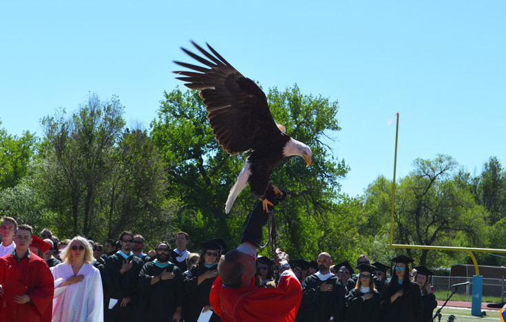 Heritage High School's mascot flaps its wings at the end of the national anthem prior to graduation at Littleton Public Schools Stadium on May 24. Photo by Kyle Harding
