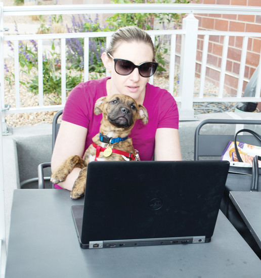 Cara Leudan sits with her puppy, Tigger, on a patio in RidgeGate as she gets some work done.