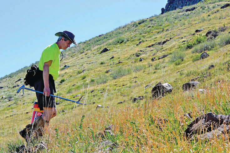 Bryon Shipley searches for snakes on the north side of North Table Mountain in Golden on Saturday, May 6.