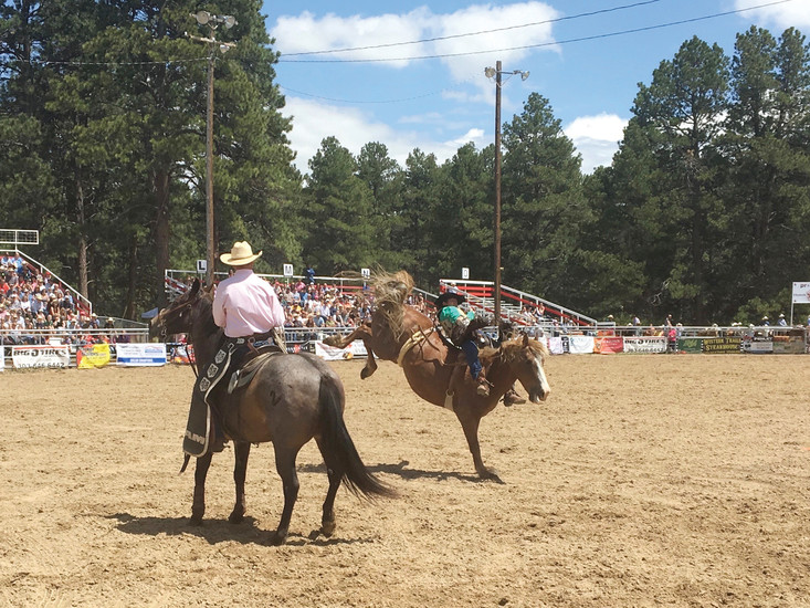 A bronc is seen bucking with a flank around its lower abdomen at the Elizabeth Stampede June 3.