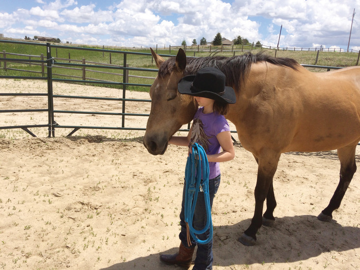 A young girl leads Honey, a quarter horse at Elizabeth's Eagle's Nest Ranch, during a bonding session with the ranch's Soaring program.