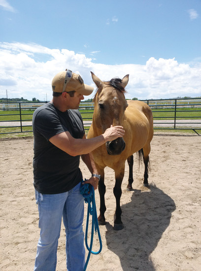 Former Marine Chris Boyer shows affection to Honey, a quarter horse at the Eagle's Nest Ranch. Boyer struggles with PTSD and visits the ranch regularly. He has benefitted from his bonds with the horses there, he said.